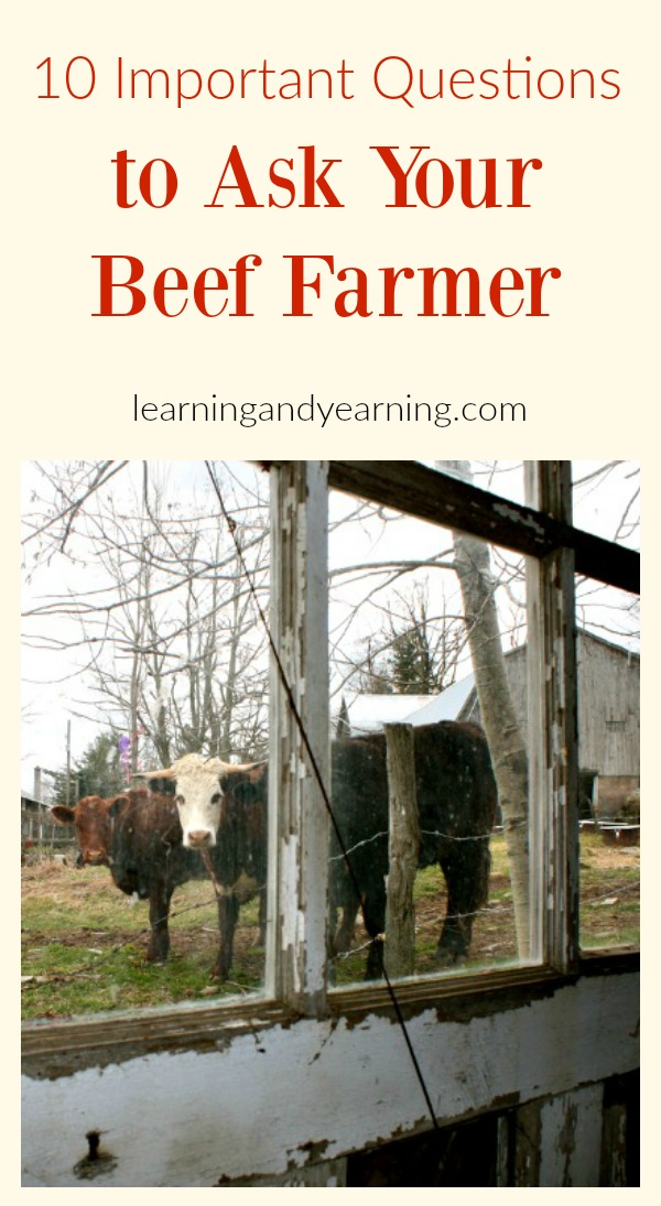 More and more families are choosing to purchase beef directly from a local farmer. It's important to them to know where their food is coming from, and how it is raised. For many of us, that can be an overwhelming task - we weren't raised on a farm, and we don't always know the terminology, much less what questions to ask.