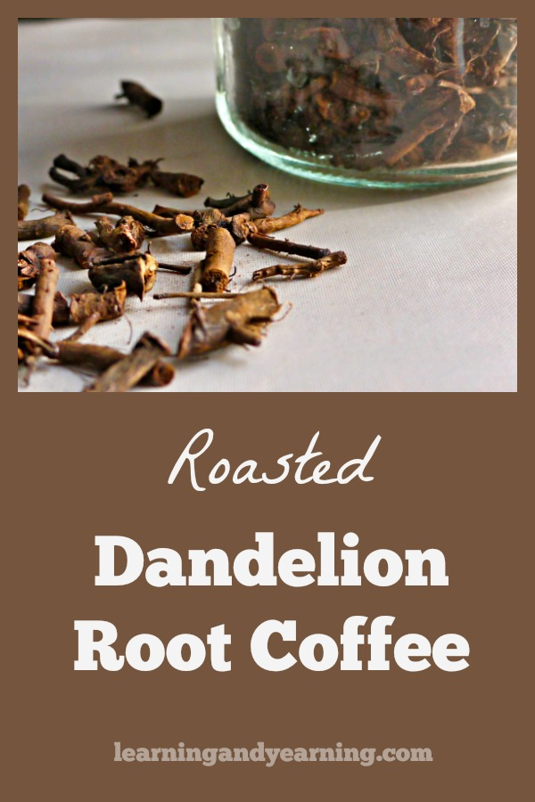 Coffee has been bothering me for some time and I decided it was time to go caffeine free. How did I do it? Roasted dandelion root coffee.