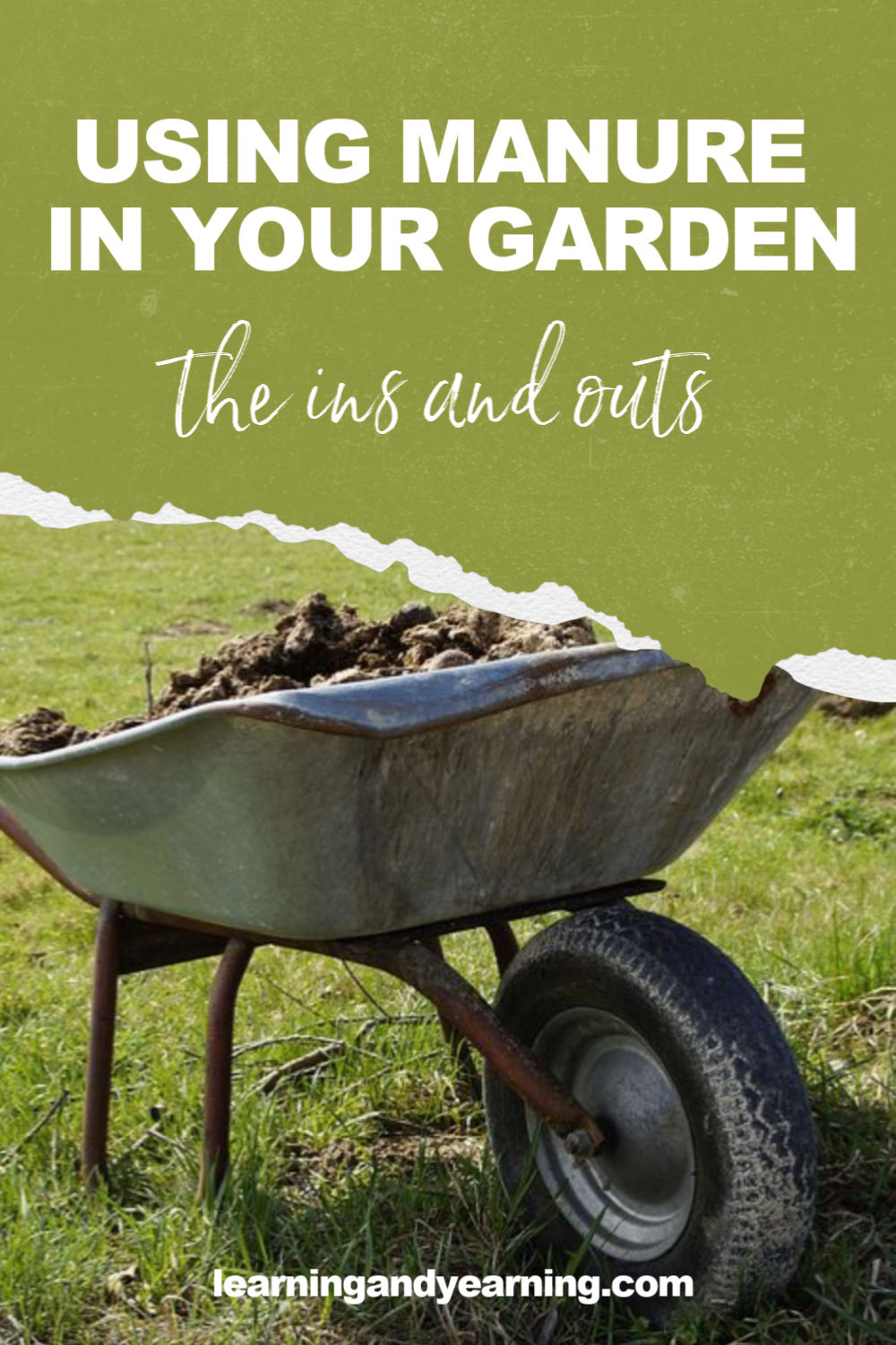 How to safely use manure in your organic garden!