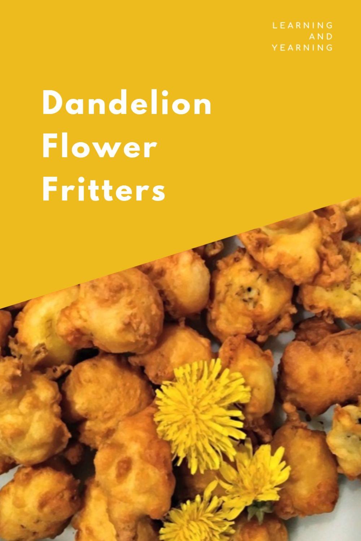 Homemade dandelion flower fritters!
