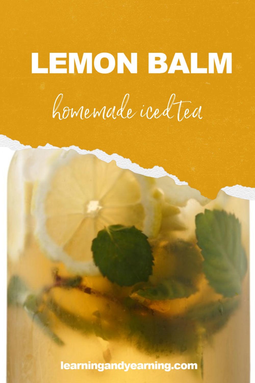Delicious, homemade lemon balm iced tea!