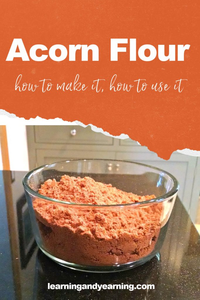 How to make and use acorn flour!
