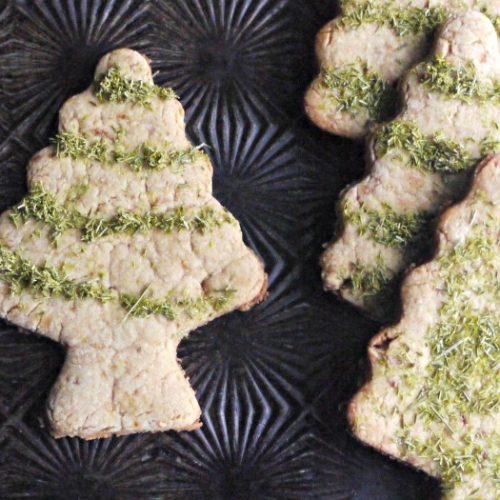 pine needle sugar cookies