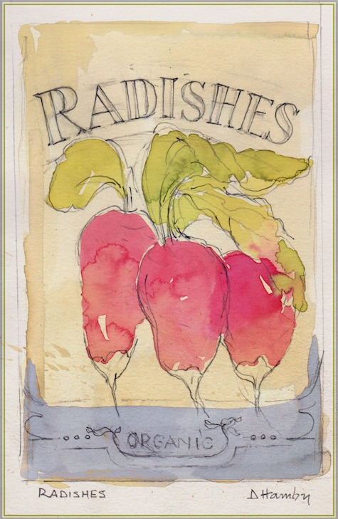radishes - vegetables that grow in shade - illustration from The Art of Gardening: Building Your Soil eBook