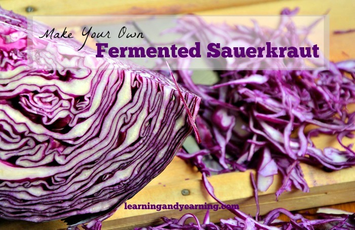 Making fermented sauerkraut is not just a great way to preserve cabbage; it's a great way improve your digestion and add probiotics to your diet!