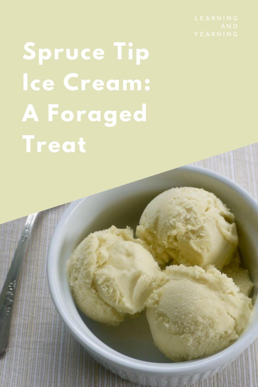 Homemade spruce tip ice cream; a foraged treat!