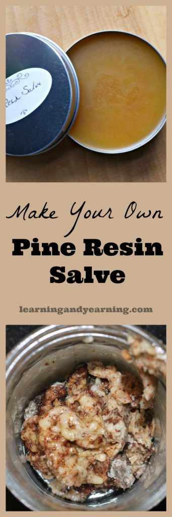 Pine resin is produced when a tree needs healing or protection. It can be collected and used for our healing, too. Just be sure to leave plenty behind to protect the tree.