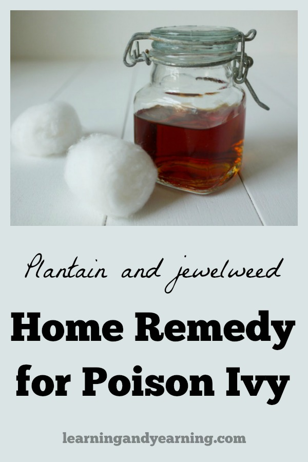Are you suffering, and wondering how to treat poison ivy? This plantain and jewelweed home remedy for poison ivy rash will bring the relief you need.
