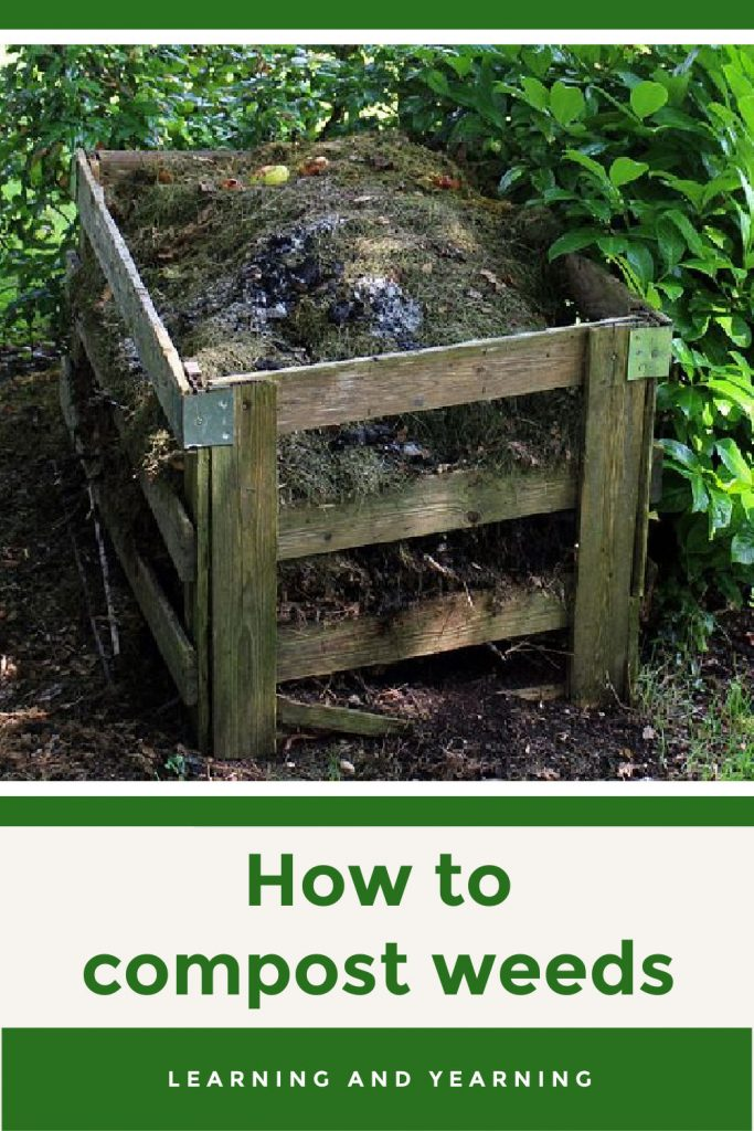 How to compost weeds without spreading them!
