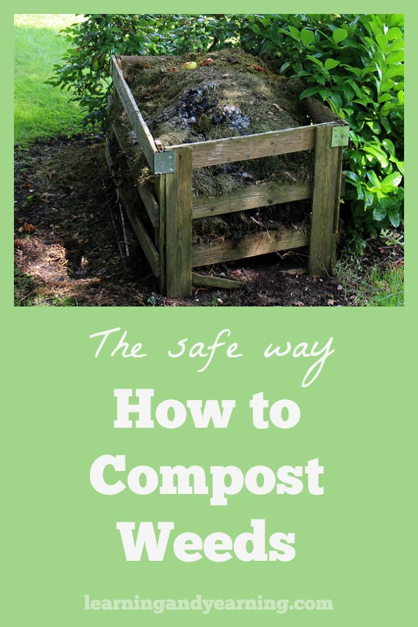 Throwing weeds in the landfill means that you are throwing precious nutrients away. Instead, learn to compost them the proper way so that those nutrients can be returned to your garden soil.