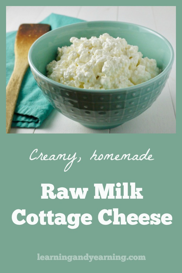 This easy, homemade raw milk cottage cheese doesn't require rennet, has only 2 simple ingredients, and is full of good bacteria and enzymes. Why not make some today? #rawmilk #homemadecottagecheese