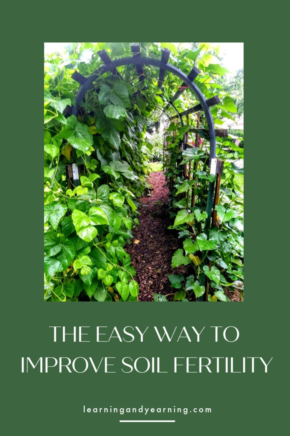 The easy way to improve soil fertility!