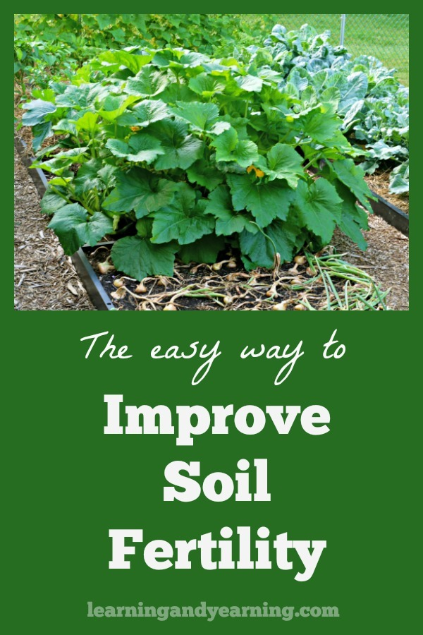 I always encourage my students to improve soil fertility because healthy, fertile soil will result in a healthy, nutrient-dense harvest. #organicgardening #soil