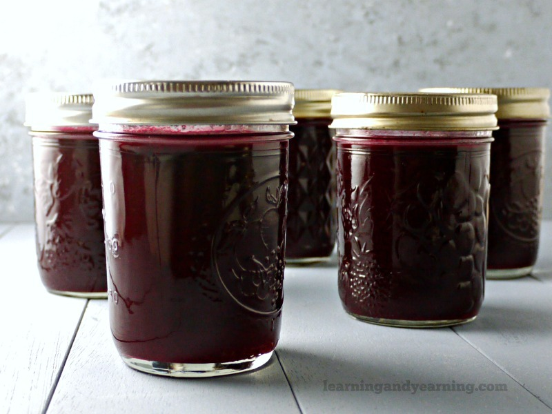 homemade low sugar elderberry jelly