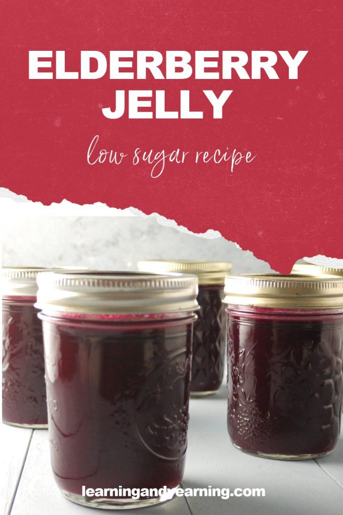 Homemade, low-sugar elderberry jelly!