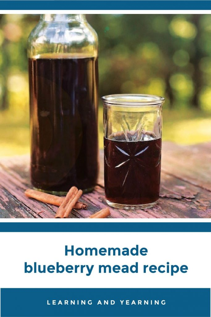 Homemade blueberry mead (honey wine)!
