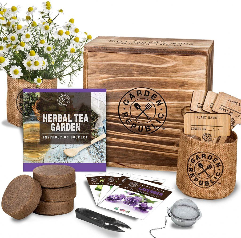 herbal garden kit