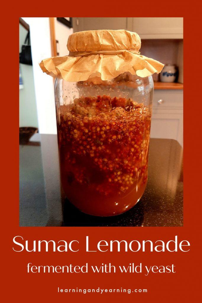 Sumac lemonade fermented with wild yeast!