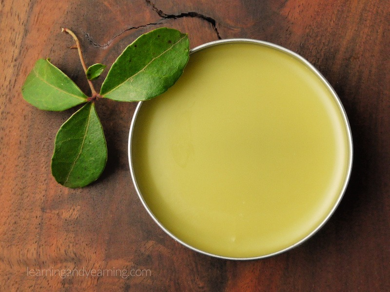 Wintergreen oil salve
