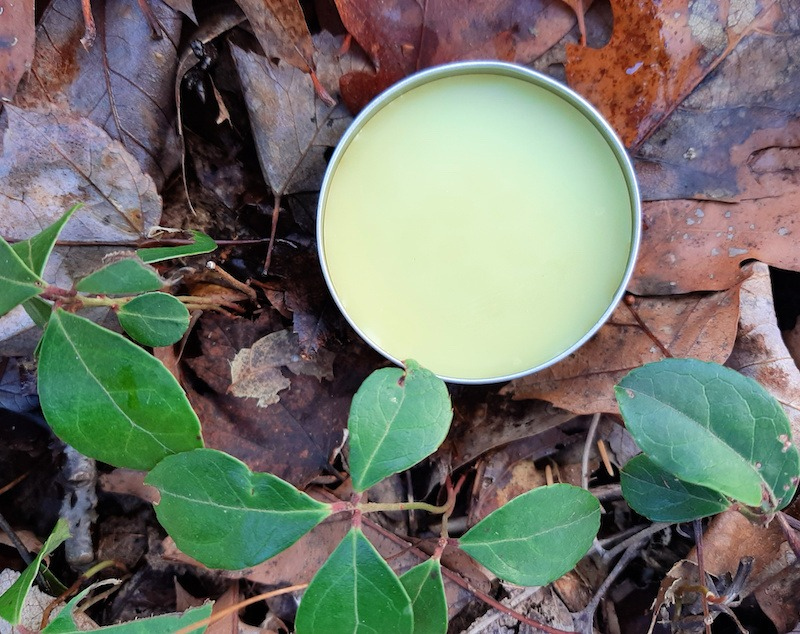 wintergreen plants and salve