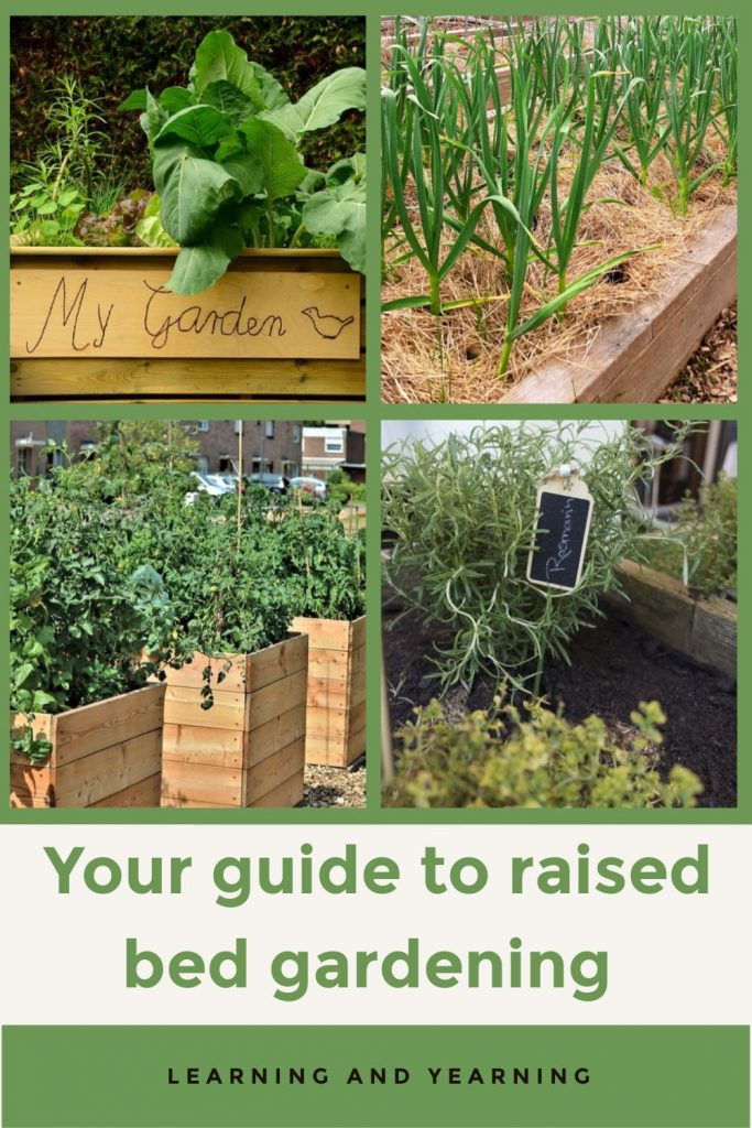 Your guide to raised bed gardening!