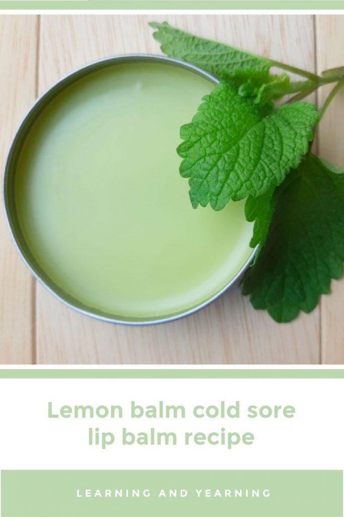 Lemon balm cold sore lip balm recipe!