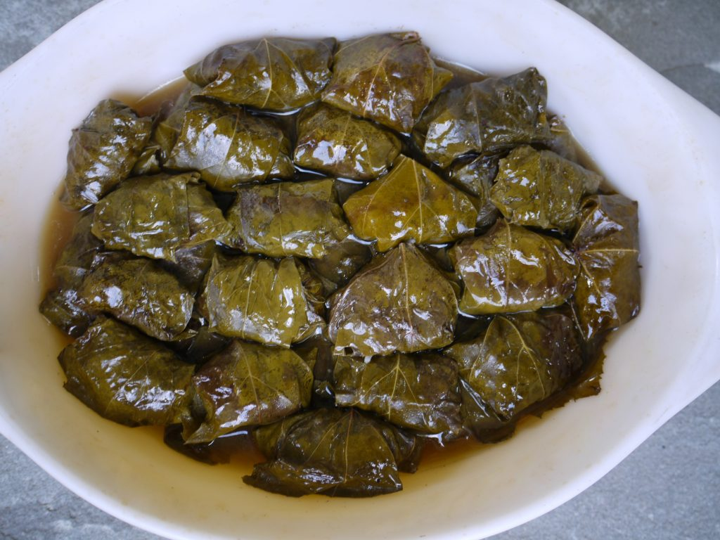 stuffed grape leaves made with foraged grape leaves